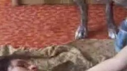 Блудная пузатая скотолюбка заскучала по пореву и занимается сексом с песиком порно зоо фильм